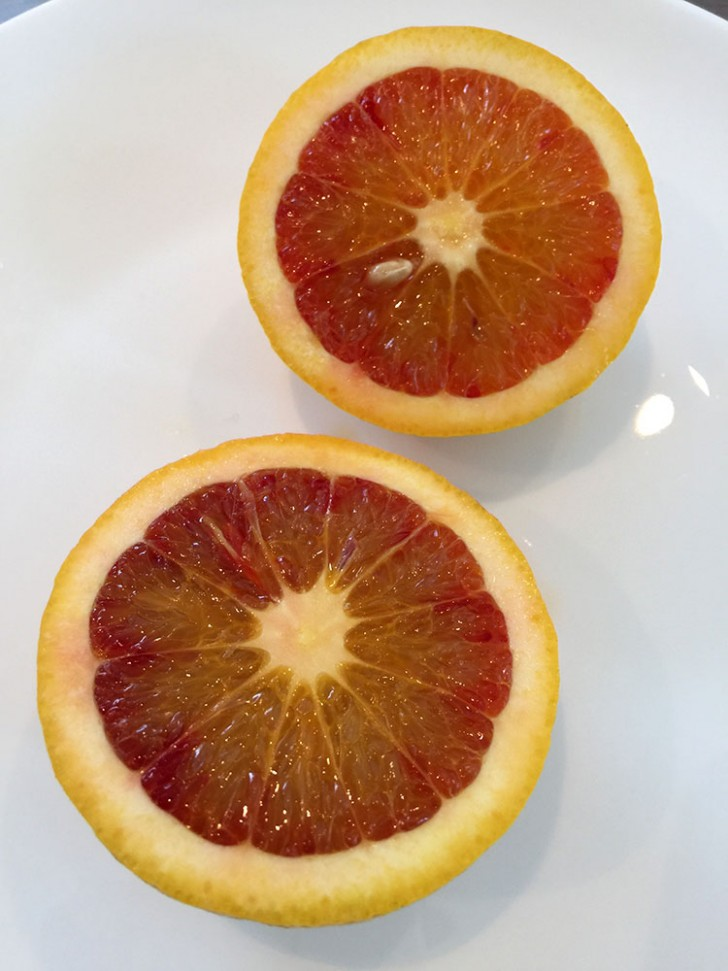 Blood_Oranges