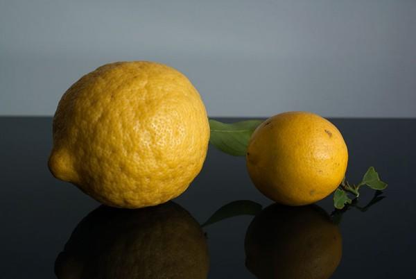 lemons01