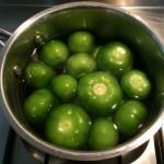 tomatillo_sauce01