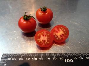 tomato_ball01