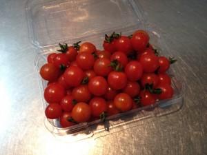 tomato_tiny02